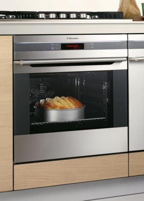 European Appliances Trends Electrolux Pan European