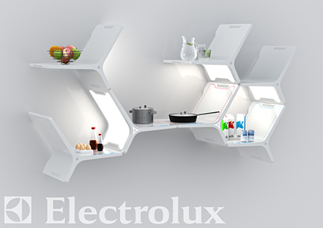 electrolux-2010-design-lab-elements.jpg