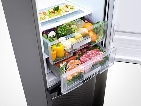 lg-iskra-ga-b489tg-fridge-freezer-opt-temp.jpg