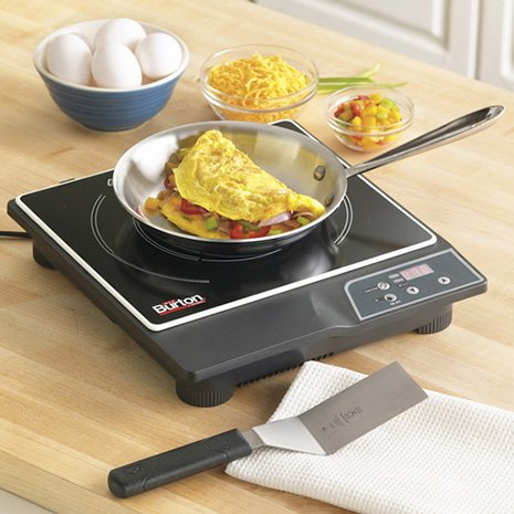 max-burton-induction-cooktop.jpg