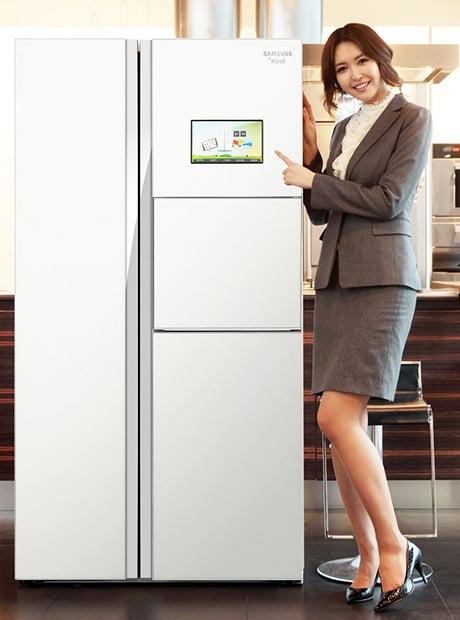 zipel e diary refrigerator